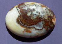 Crazy Lace Agate (Click to enlarge)